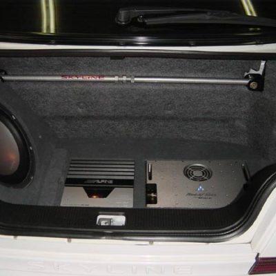 trunk1-2