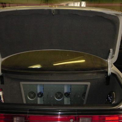 trunk3-5